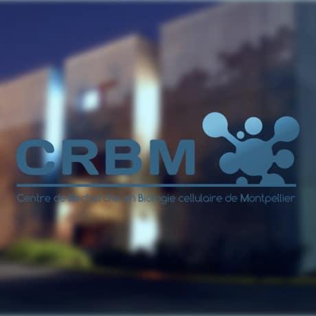 crbm présentation